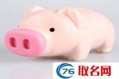 2019猪年宝宝特点小名